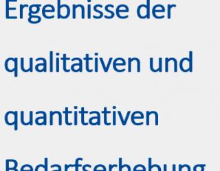Innovationsforum Bedarfserhebung: Ergebnisse der qualitativen und quantitativen Bedarfserhebung